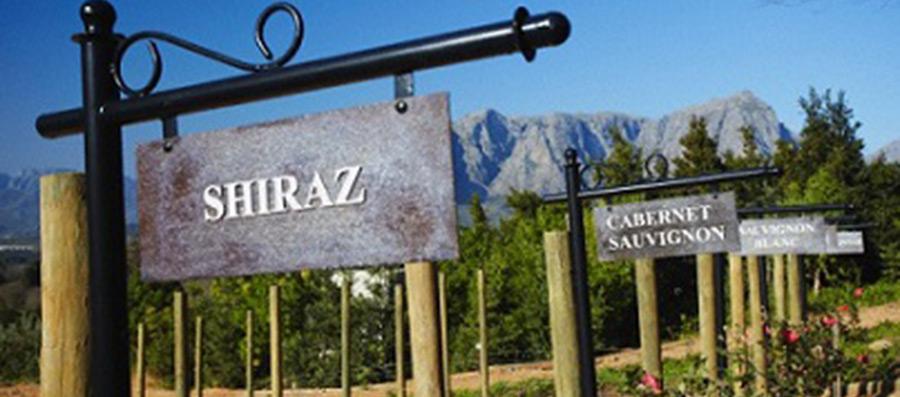 Del vino patero, el Shiraz y otras yerbas